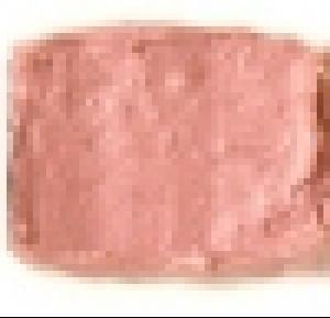 Bulk Lip Gloss #153 Peach Pout