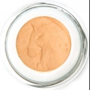 Saturnina Vegan Mousse Foundation