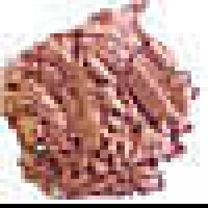Packaged Versatile Powder Semi-Matte Beige #41m